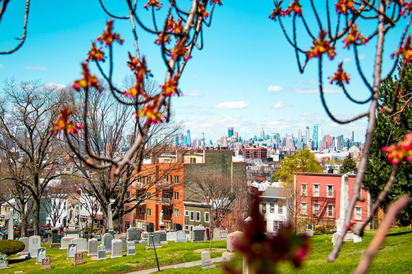 NYC Skyline from Green-Wood Cemetery