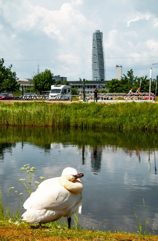 The Turning Torso in Malmo Sweden