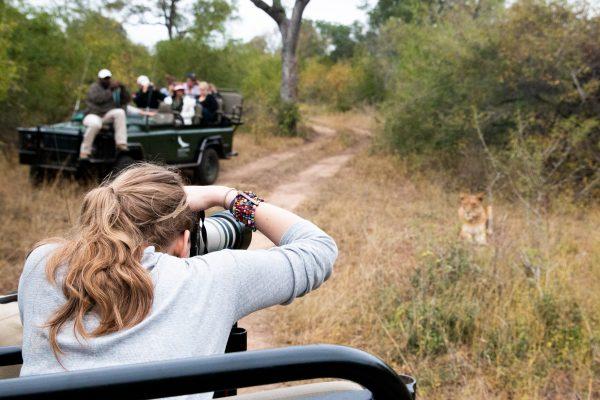 South Africa Safari, 2015