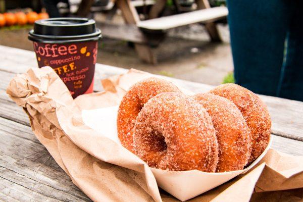 Apple Cider Donuts Wright's Farm NY