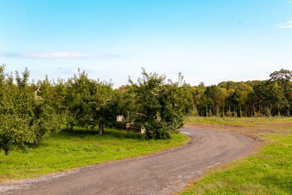 Wright's Farm Orchard NY