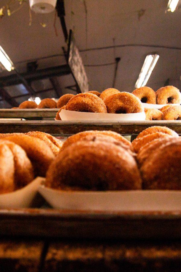 Apple Cider Donuts at Wright's Farm Market NY
