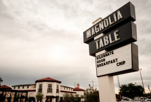 Magnolia_feature